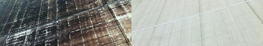 Roof Cleaning Charleston Black Algae Mold